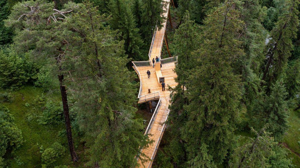 Der Baumwipfelweg in Laax (c) Philipp Ruggli